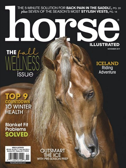 Horse Illustrated Cover - 11/1/2019