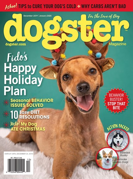 Dogster Cover - 12/1/2019