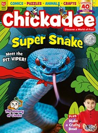 chickaDEE Magazine | 11/2019 Cover