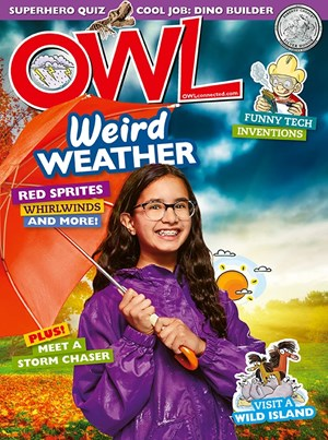 OWL Magazine | 11/2019 Cover