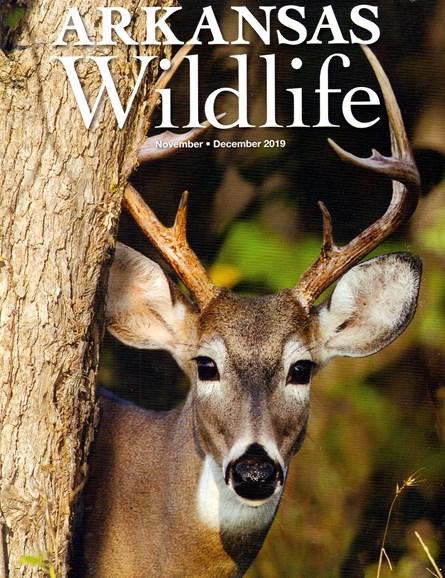 Arkansas Wildlife Cover - 11/1/2019