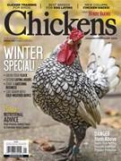 Chickens 1/1/2020