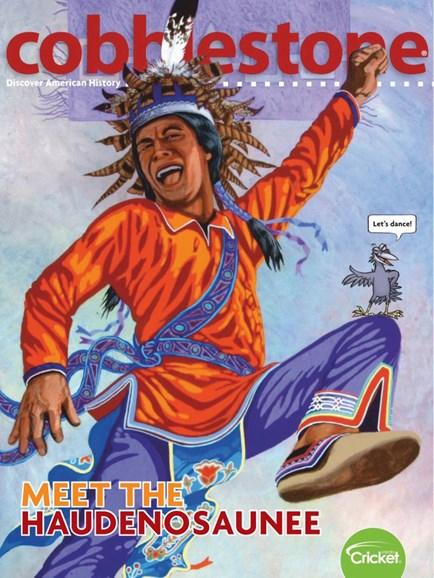 Cobblestone Cover - 11/1/2019
