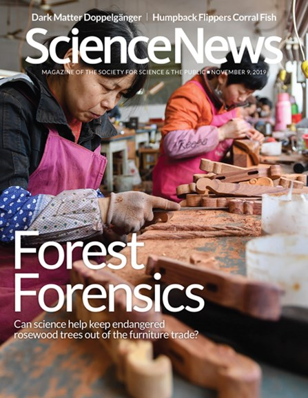 Science News Cover - 11/9/2019