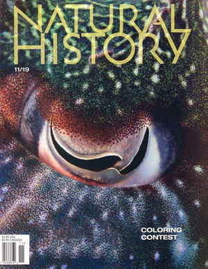Natural History Magazine | 11/2019 Cover