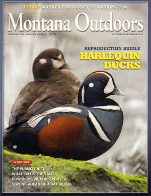 Montana Outdoors Magazine | 11/2019 Cover