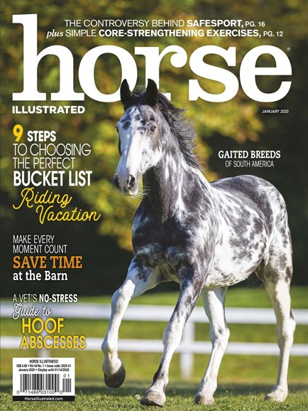Horse Illustrated Cover - 1/1/2020