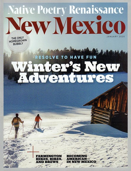 New Mexico Cover - 1/1/2020