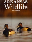 Arkansas Wildlife Magazine 1/1/2020