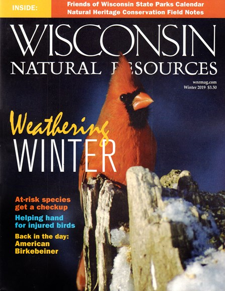 Wisconsin Natural Resources Cover - 12/1/2019