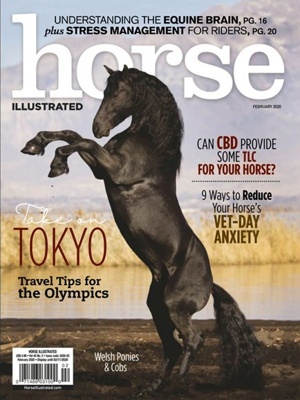 Horse Illustrated Cover - 2/1/2020