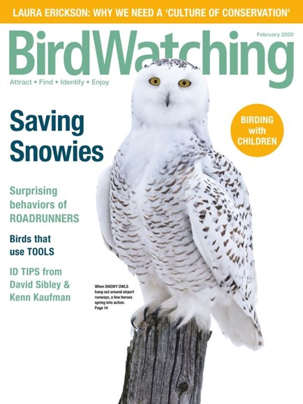 Bird Watching Cover - 1/1/2020