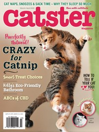 Catster | 3/2020 Cover