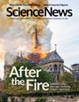 Science News Magazine | 1/18/2020 Cover
