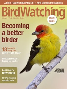 Bird Watching   4/2020 Cover