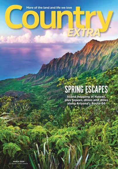 Country Extra Cover - 3/1/2020