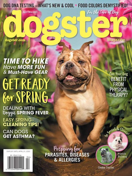 Dogster Cover - 4/1/2020