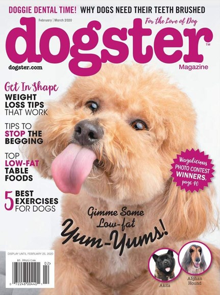 Dogster Cover - 2/1/2020