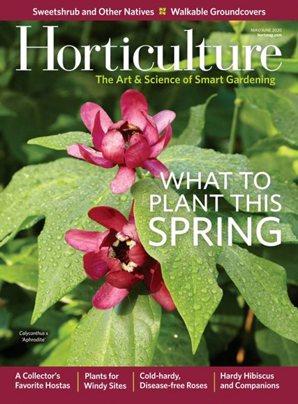 Horticulture Cover - 5/1/2020