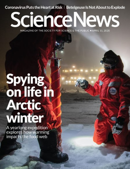 Science News Cover - 4/11/2020
