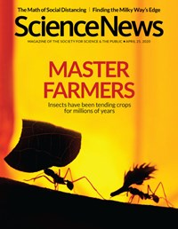 Science News Magazine   4/25/2020 Cover
