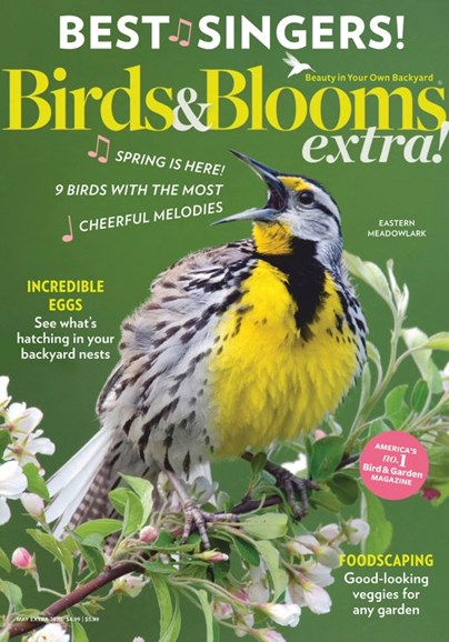Birds & Blooms Extra Cover - 5/1/2020