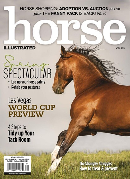 Horse Illustrated Cover - 4/1/2020