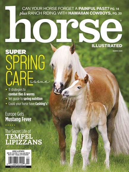 Horse Illustrated Cover - 3/1/2020