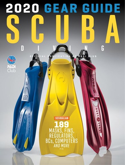 Scuba Diving Cover - 3/1/2020