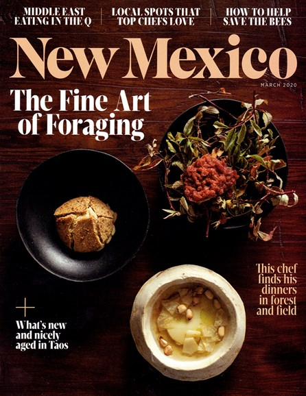 New Mexico Cover - 3/1/2020