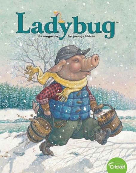 Ladybug Cover - 2/1/2020