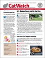 Catwatch Magazine | 4/2020 Cover