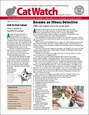 Catwatch Magazine | 1/2020 Cover
