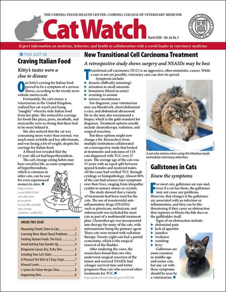 Catwatch Cover - 3/1/2020
