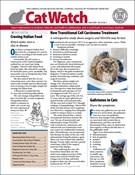 Catwatch Magazine 3/1/2020