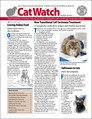 Catwatch Magazine | 3/2020 Cover