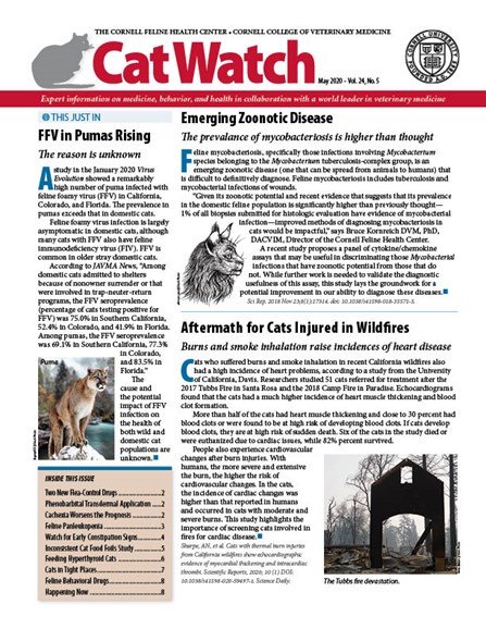 Catwatch Cover - 5/1/2020