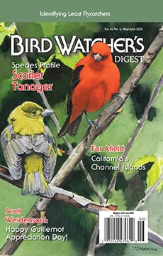 Bird Watcher's Digest | 5/2020 Cover