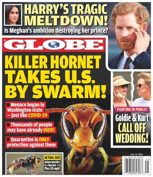Globe Cover - 5/25/2020