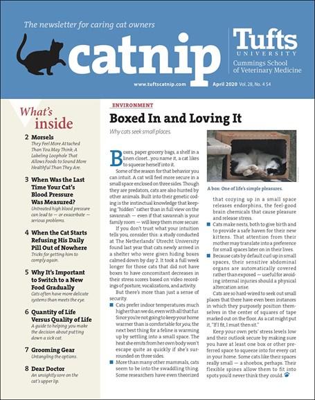 Catnip Cover - 4/1/2020