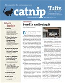 Catnip Newsletter 4/1/2020