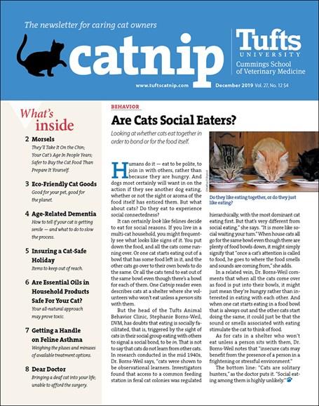 Catnip Cover - 12/1/2019