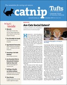 Catnip Newsletter 12/1/2019