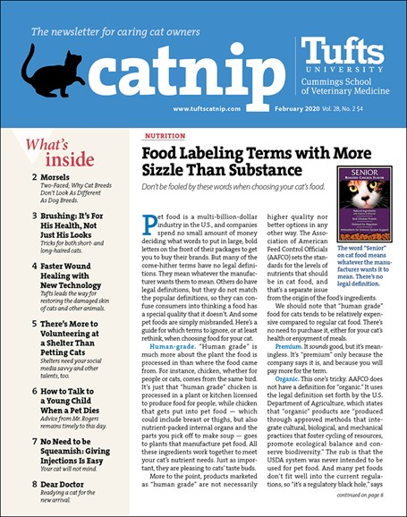 Catnip Cover - 2/1/2020