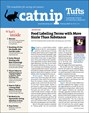 Catnip Newsletter | 2/2020 Cover