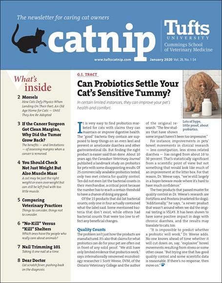 Catnip Cover - 1/1/2020