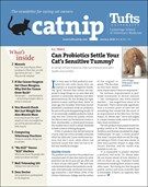 Catnip Newsletter 1/1/2020