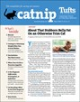 Catnip Newsletter | 3/2020 Cover
