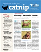 Catnip Newsletter 5/1/2020