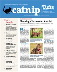 Catnip | 5/2020 Cover